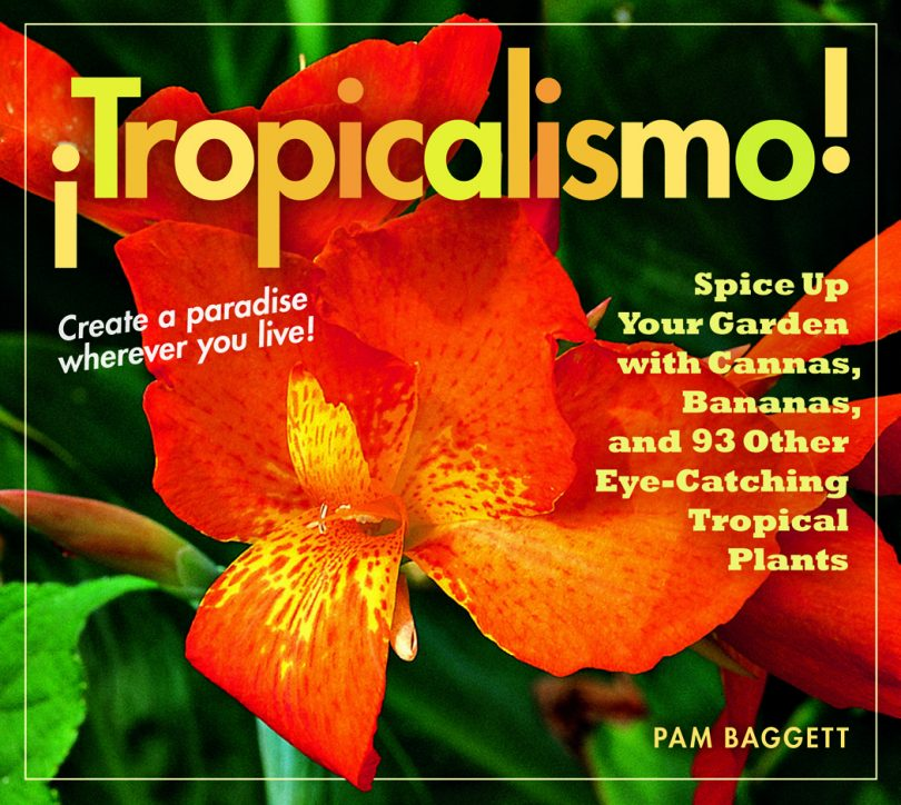 Book cover Tropicalismo
