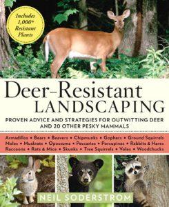 Deer Resistant:web