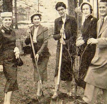 raleigh garden club