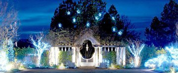 Daniel stowe gardens holiday lights triangle gardener - Daniel stowe botanical garden christmas ...
