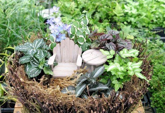 Fairy Gardens Triangle Gardener Magazine