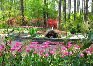 Botanical Gardens In North Carolina Triangle Gardener Magazine