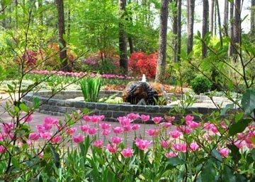 Botanical Gardens In North Carolina Triangle Gardener