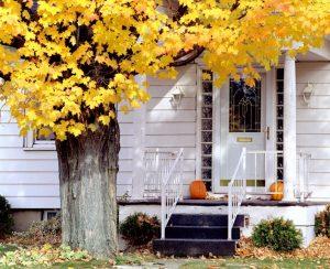 colorful autumn scene on residential neighborhood street
