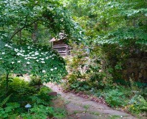 The Ikenberry garden / Carolyn Ikenberry