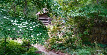 ikenberry garden
