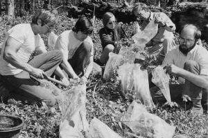 Plant rescue at Grandfather Mountain in North Carolina / NC Botanical Garden