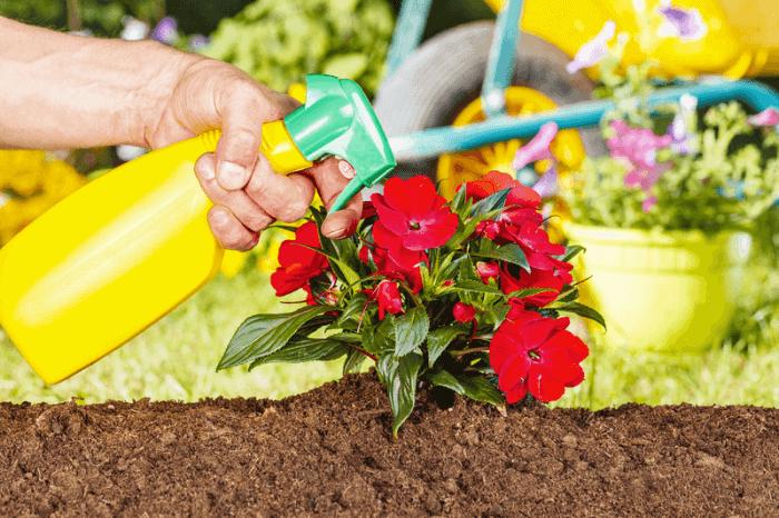 Garden chemical sprayer