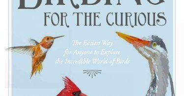 Birding for the Curious