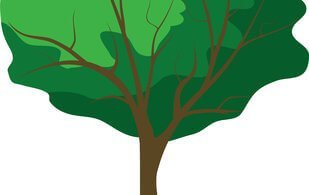 Tree and roots illustration