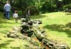 Everglades Garden Australia