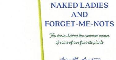 Armitage Book Cover