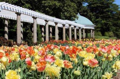 Exploring Richmond 39 S Garden Trail Triangle Gardener Magazine
