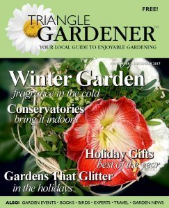 TG Nov-Dec 2017 cover