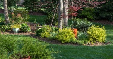 Chapel Hill Garden Club Tour