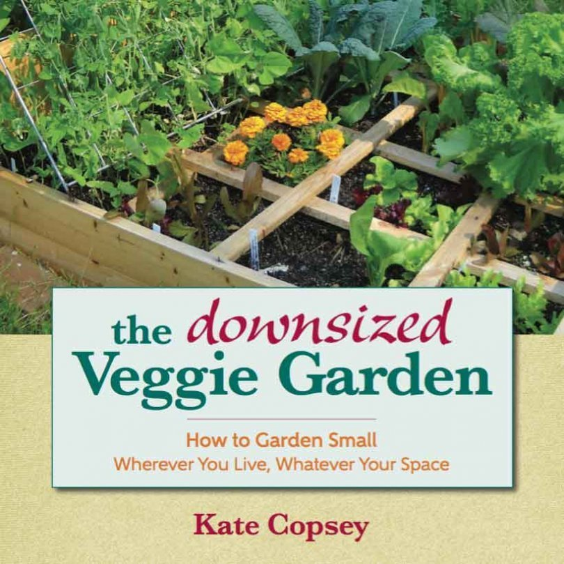 The downsized Veggie Garden