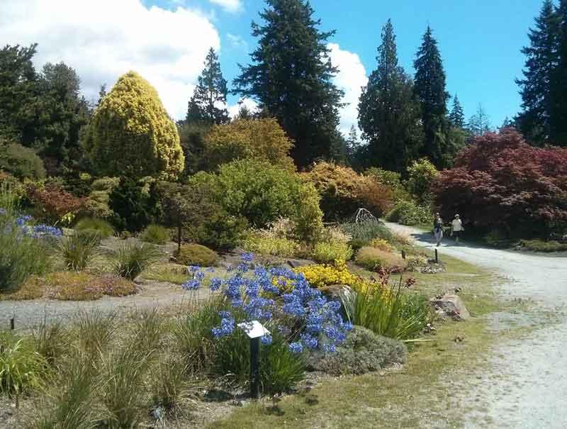 UBC Alpine Garden