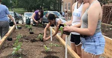 Edible Garden at UNC Chapel Hill