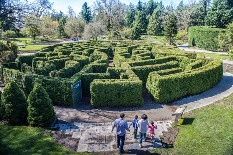 The Elizabethan Maze at VanDusen Botanical Garden / SOMBILON-STUDIOS