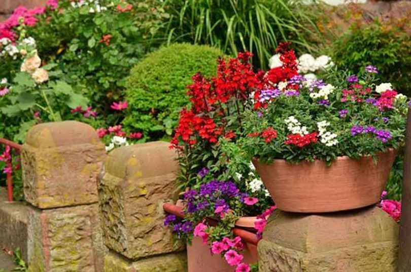 Flowers on retaining wall